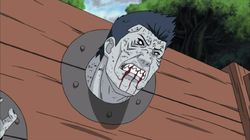 The Man Named Kisame