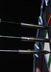 Darts: World Championships