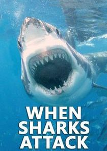 When Sharks Attack